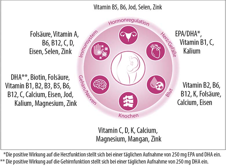 Nährstoffe Schwangerschaft und Stillzeit