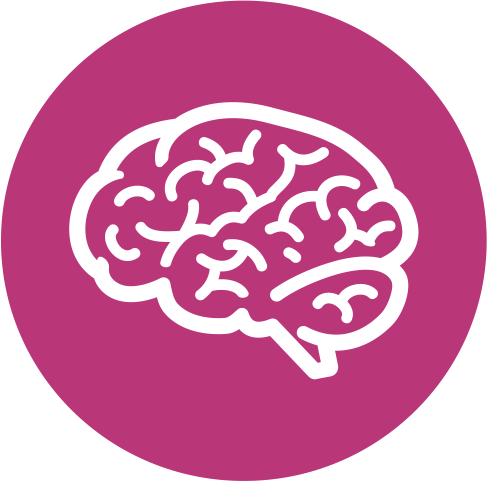 Gehirn & Nerven