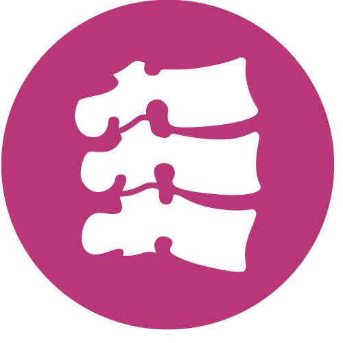 Knochen  & Gelenke